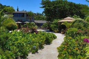 Joe Angelo - BH Luscious Gardens